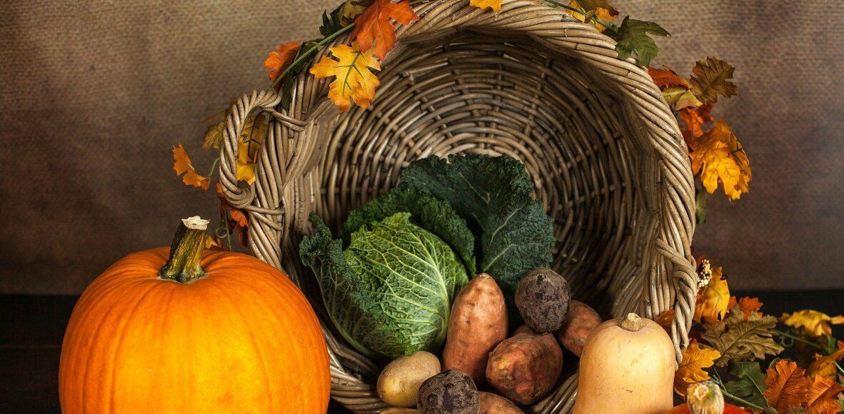pumpkin-1768857_1920